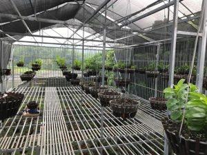 Hướng dẫn thi công và lắp đặt lưới che nắng thái lan